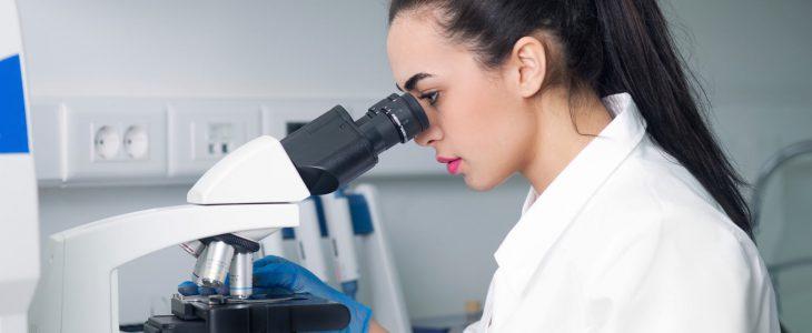 Scientists looks through microscope